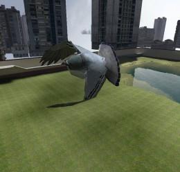 rabies-pigeon.zip For Garry's Mod Image 2