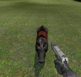 friendly_horse_npc.zip For Garry's Mod Image 2