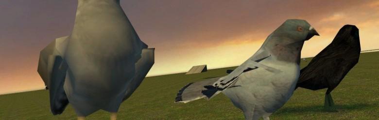 Bird Mounts 2.1 For Garry's Mod Image 1