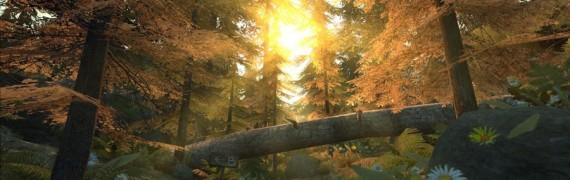 de_forest.zip