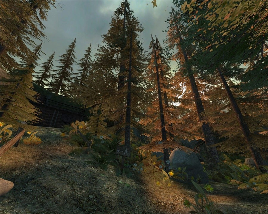 Gmod Forest Map