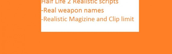 half_life_2_realistic_weapons_
