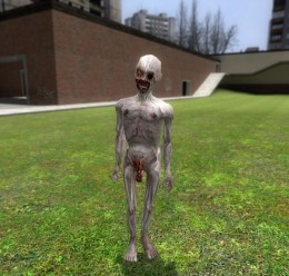 Penumbra Infected For Garry's Mod Image 1