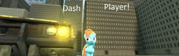 Rainbowdash player!