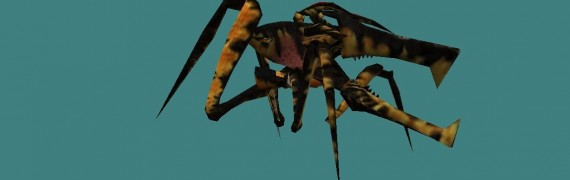 arachnid_npc.zip