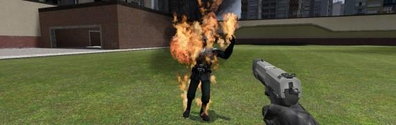 Half-Life 2 Flaregun Swep.zip