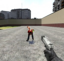 Punisher For Garry's Mod Image 2