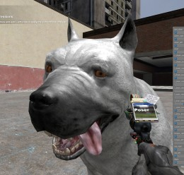 Animal Pack (Dragon Age) For Garry's Mod Image 2