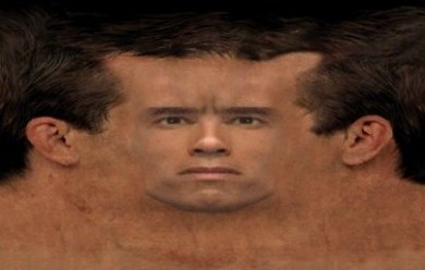 arnold_skin_gmod.zip For Garry's Mod Image 2