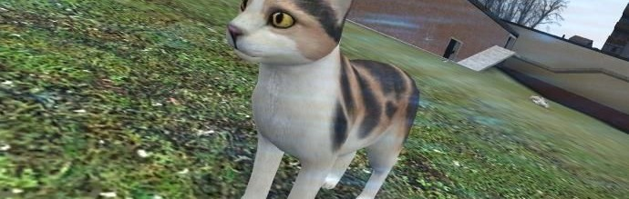 CuteCat + spawnlist {FIXED} For Garry's Mod Image 1