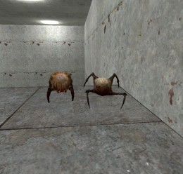the_friendly_headcrab_family_p For Garry's Mod Image 3