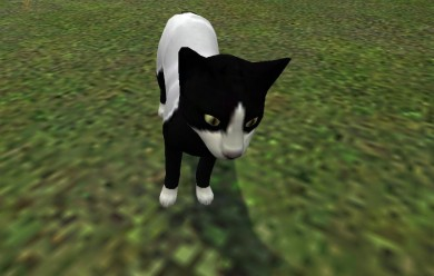 Kitty NEW reskin! For Garry's Mod Image 1