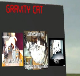 gravity_cat_the_game_reskinv1. For Garry's Mod Image 1