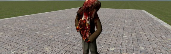 zombie_and_headcrab_from_beta.
