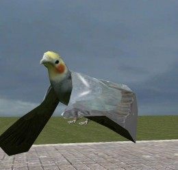 cockatiel pigeon replacement For Garry's Mod Image 3