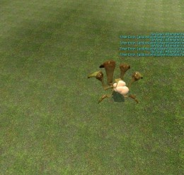 shieldbug_playermodel.zip For Garry's Mod Image 1