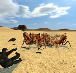 arachnid_antlions.zip For Garry's Mod Image 2