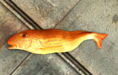 fish_ragdoll.zip For Garry's Mod Image 1