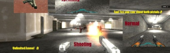 Akimbo HL2 Weapons