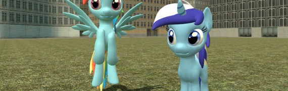 Pony NPC and Playermodel