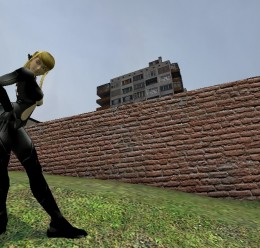 skin.zip For Garry's Mod Image 2