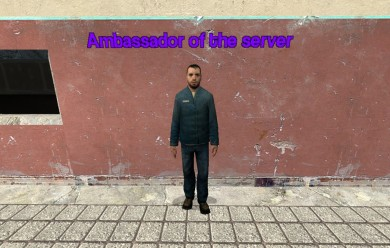 Server Ambassador NPC For Garry's Mod Image 1