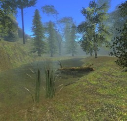 forest2008.zip For Garry's Mod Image 3