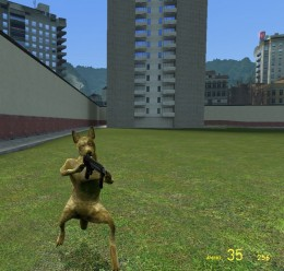 Dog Player Models V1 Fixed For Garry's Mod Image 2