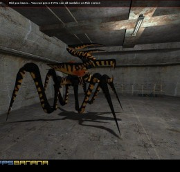 arachnid_npc_v3.zip For Garry's Mod Image 1