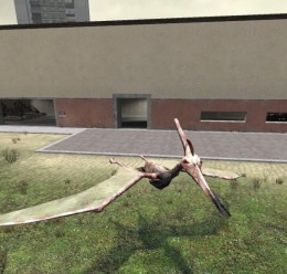 Pteranodon (it's a flying dino For Garry's Mod Image 3