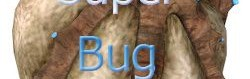 super_bugbait.zip