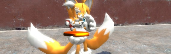 tails_and_vector.zip