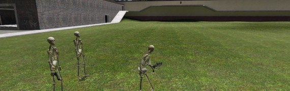 Skeleton Playermodel.zip